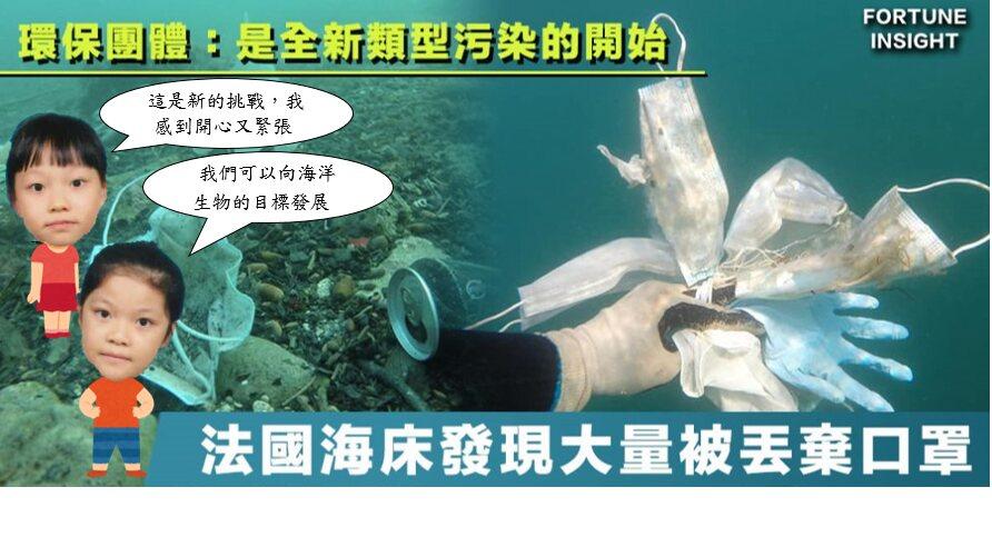 我們決定關注海洋環境和海洋生物的議題