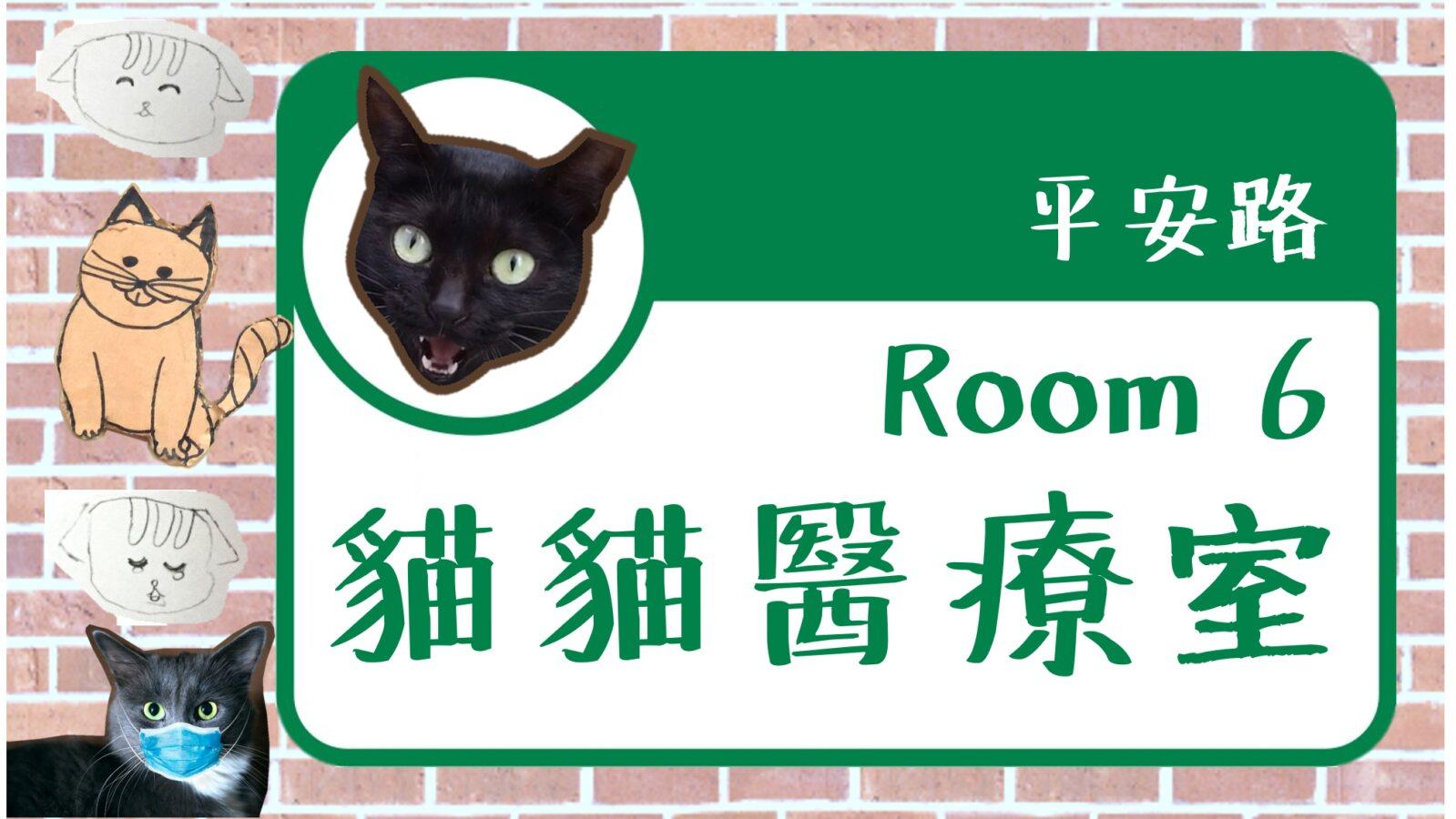 貓貓醫療室 DSP_014906
