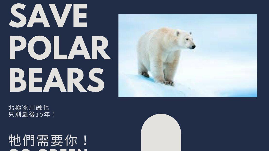 幫助北極熊環保特工小隊(DSP_014910)