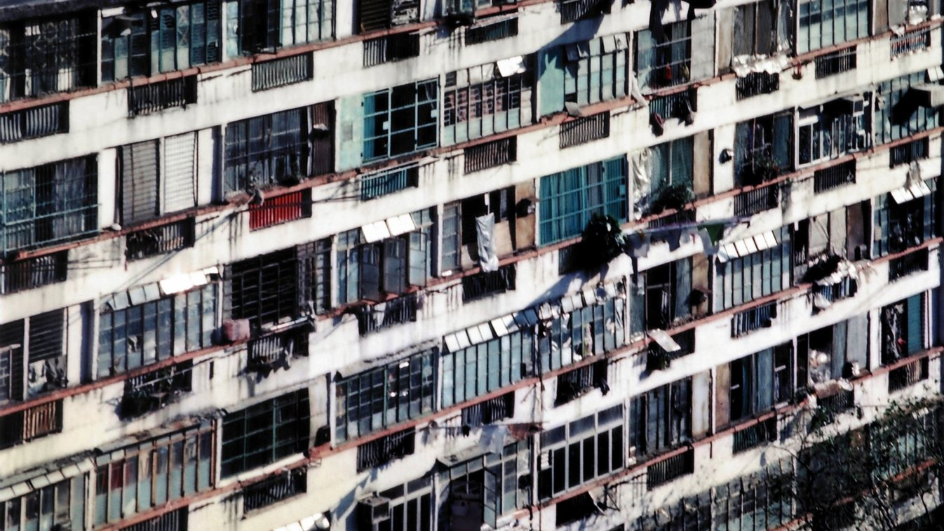 Hamster Housing Crisis (DSP_096204)