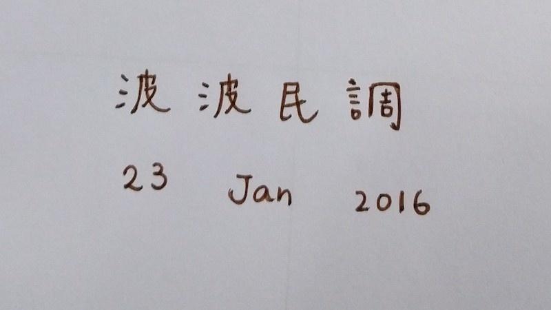 波波民調 @ 100In1Day Hong Kong