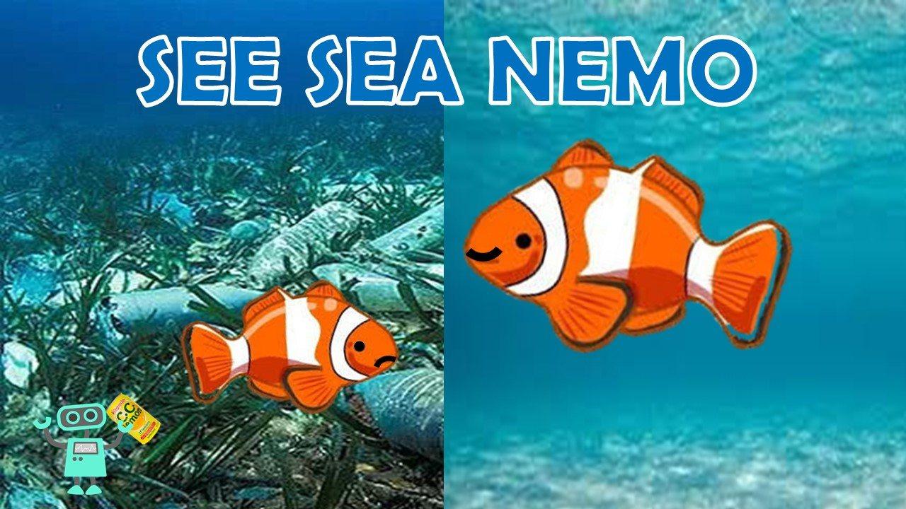 DSP_041502_SEE SEA NEMO