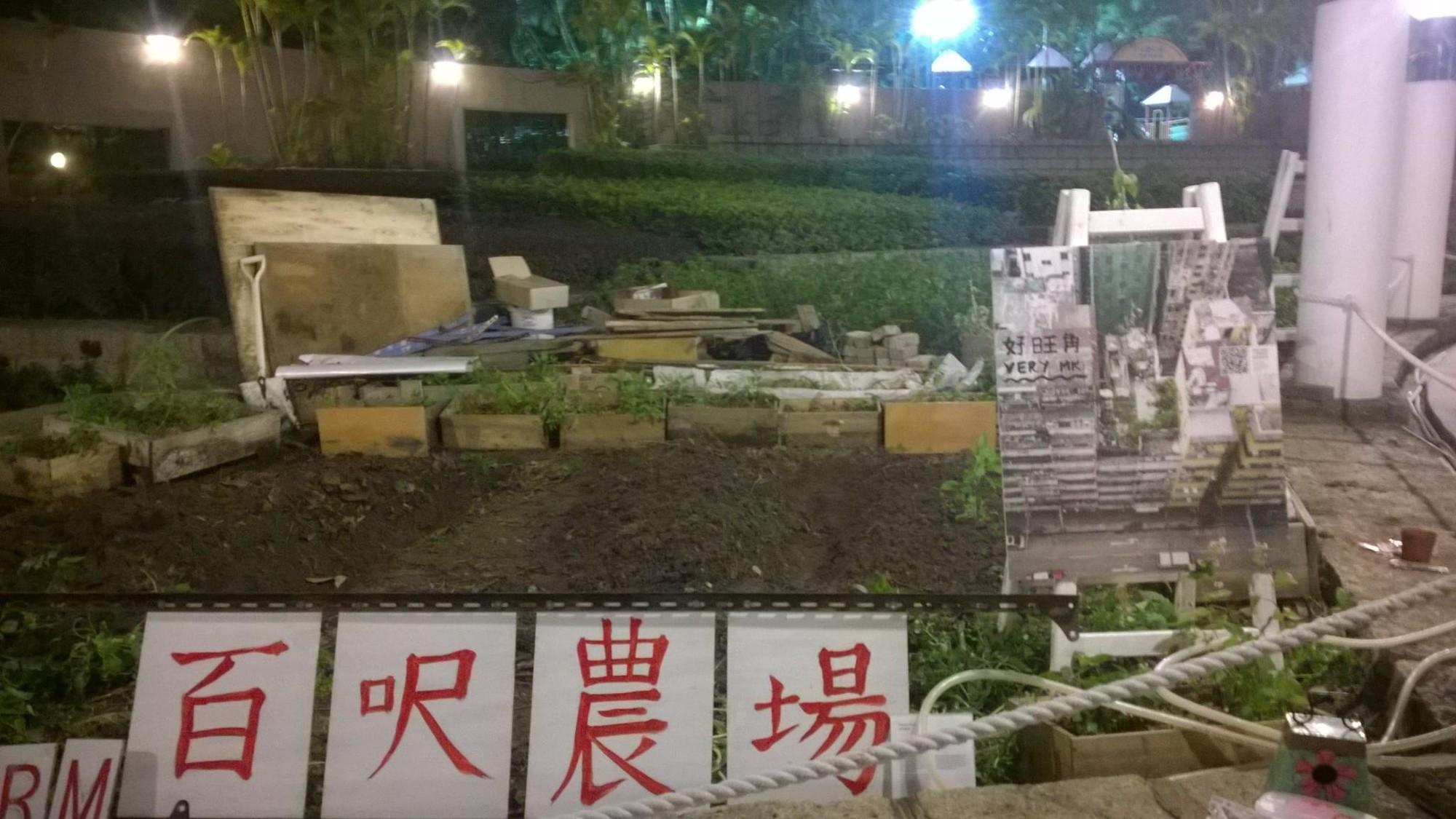 區區有田耕-城市種植計劃