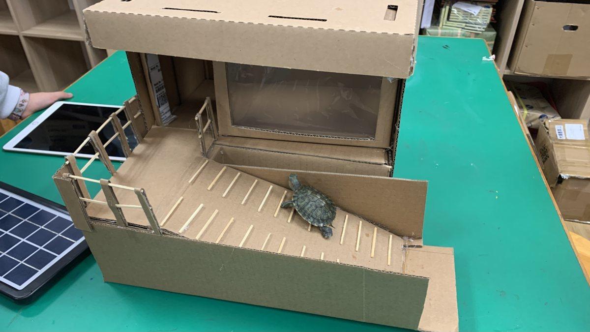 Sea Turtle's Shelter (有家「龜」得得)