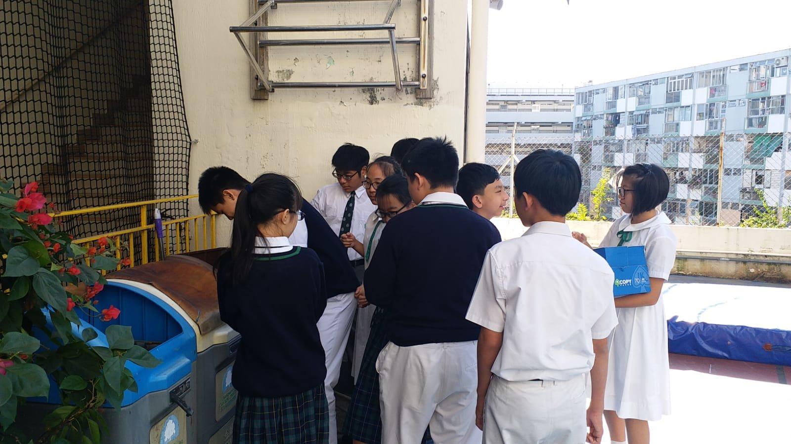 環保膠樽溫室